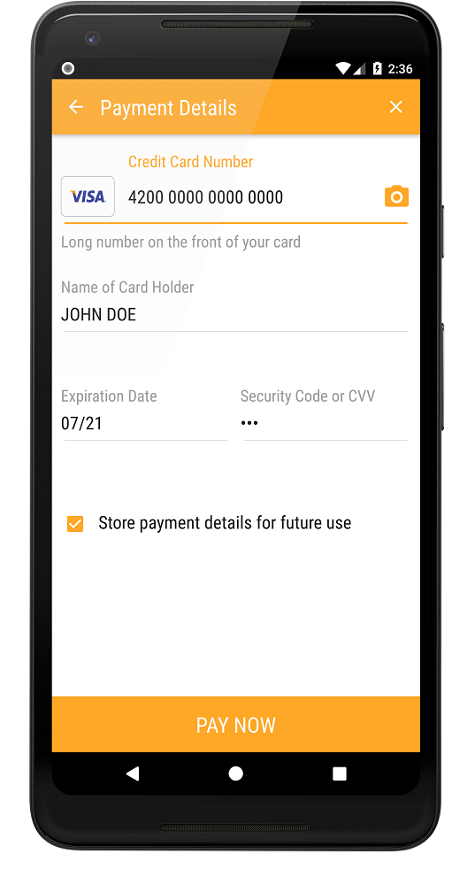 Store payment details during payment